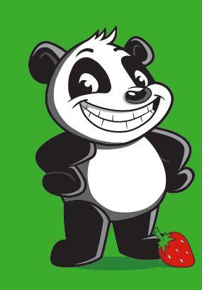 Amway Glister Kids panda