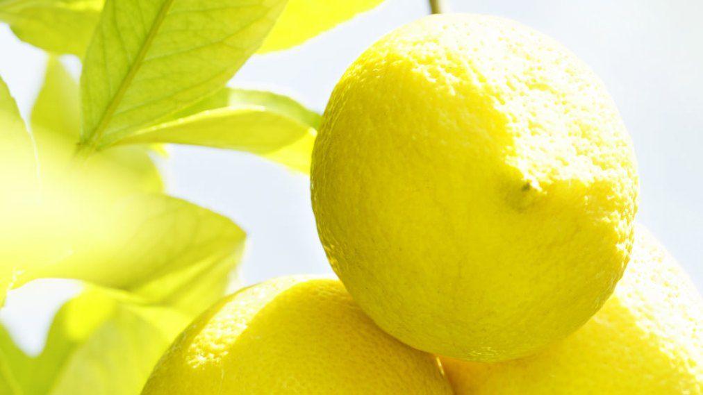 Weleda citrus illóolajos kozmetikumok