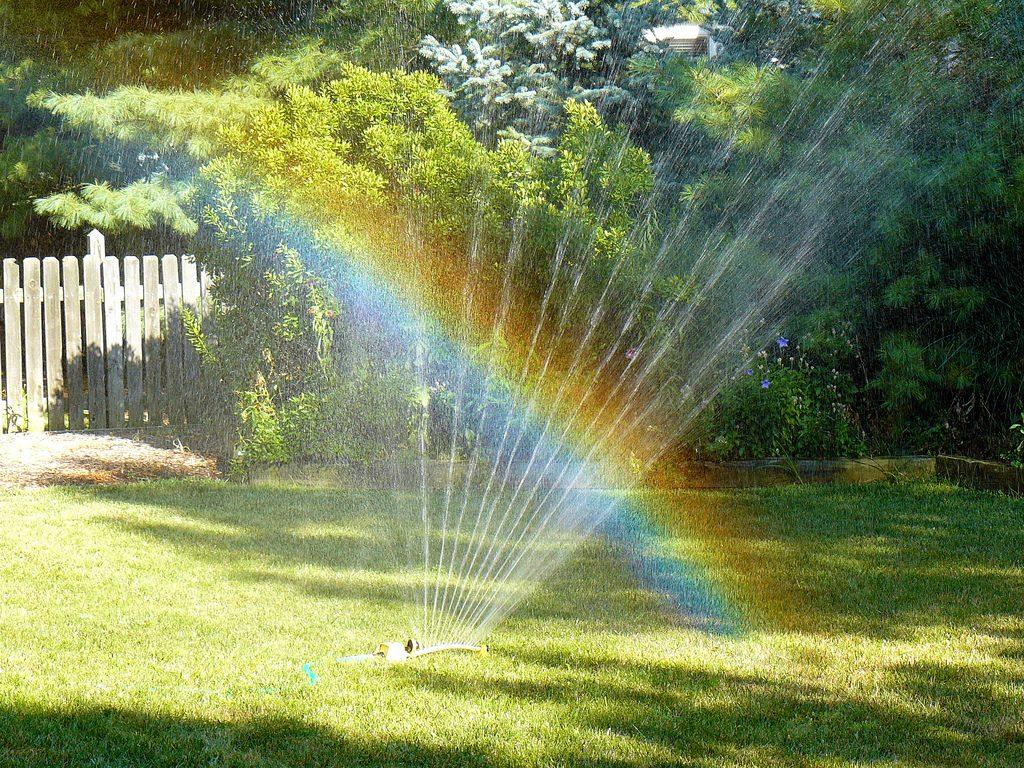 kert, öntözés, így locsold a kerted, rúzs és más