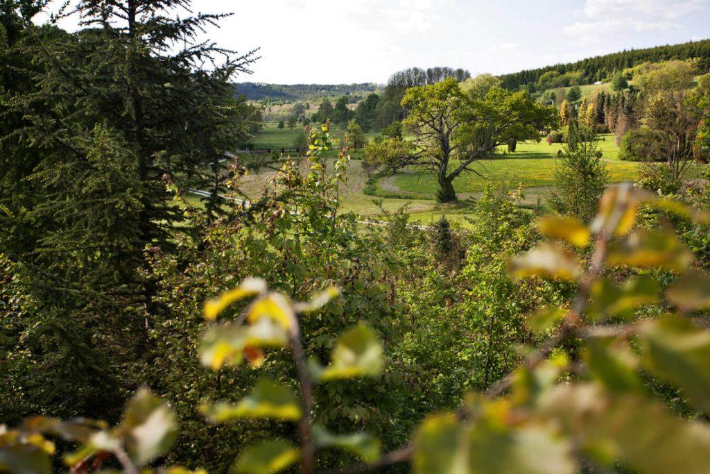 Ohmydeer környezetvédő erdőfesztivál, Murafölde, Zala, rúzs és más